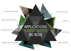 Application_surprenantes_du_bois